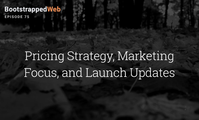 [75] Pricing Strategy, Marketing Focus, and Launch Updates