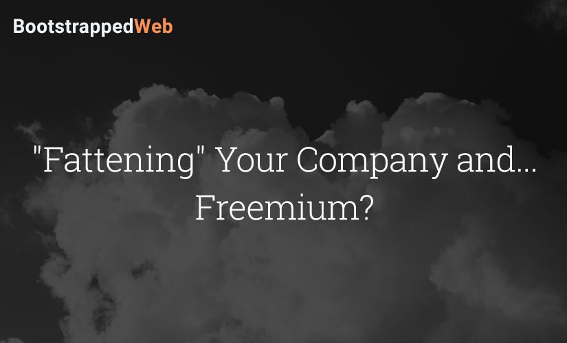 """Fattening"" Your Company and… Freemium?"